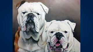 Английский бульдог (English Bulldog)