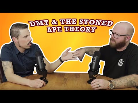 DMT & The Stoned Ape Theory ( Jerid and Brian Podcast - S1 E4 )