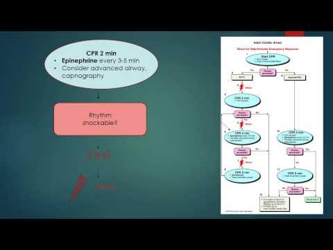 ACLS 2010 Algorithm Review V-Fib / Pulseless V-Tach