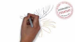 Как нарисовать бабочку на цветке(Как нарисовать картинку поэтапно карандашом за короткий промежуток времени. Видео рассказывает о том,..., 2014-07-02T06:00:10.000Z)