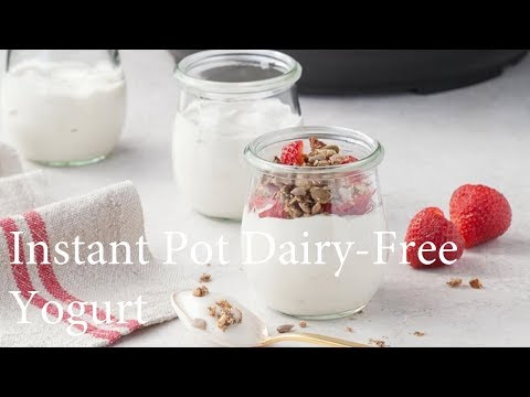 Instant Pot Dairy-Free Yogurt