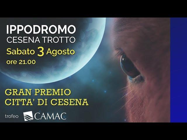 Ippodromo di Cesena I Presentazione Gran Premio Città di Cesena 2019 Trofeo CAMAC