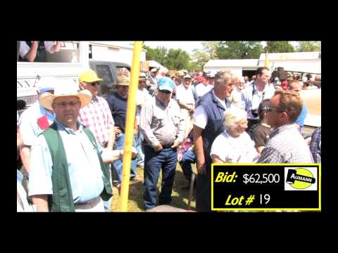 Aumann Auctions - Sylvester Antique Tractor Auction - Auctioning the Emerson Model L Tractor