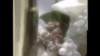 HD Свадебные футажи ШАМПАНСКОЕ В БОКАЛАХ скачать бесплатно в хорошем качестве без регистрации 2014