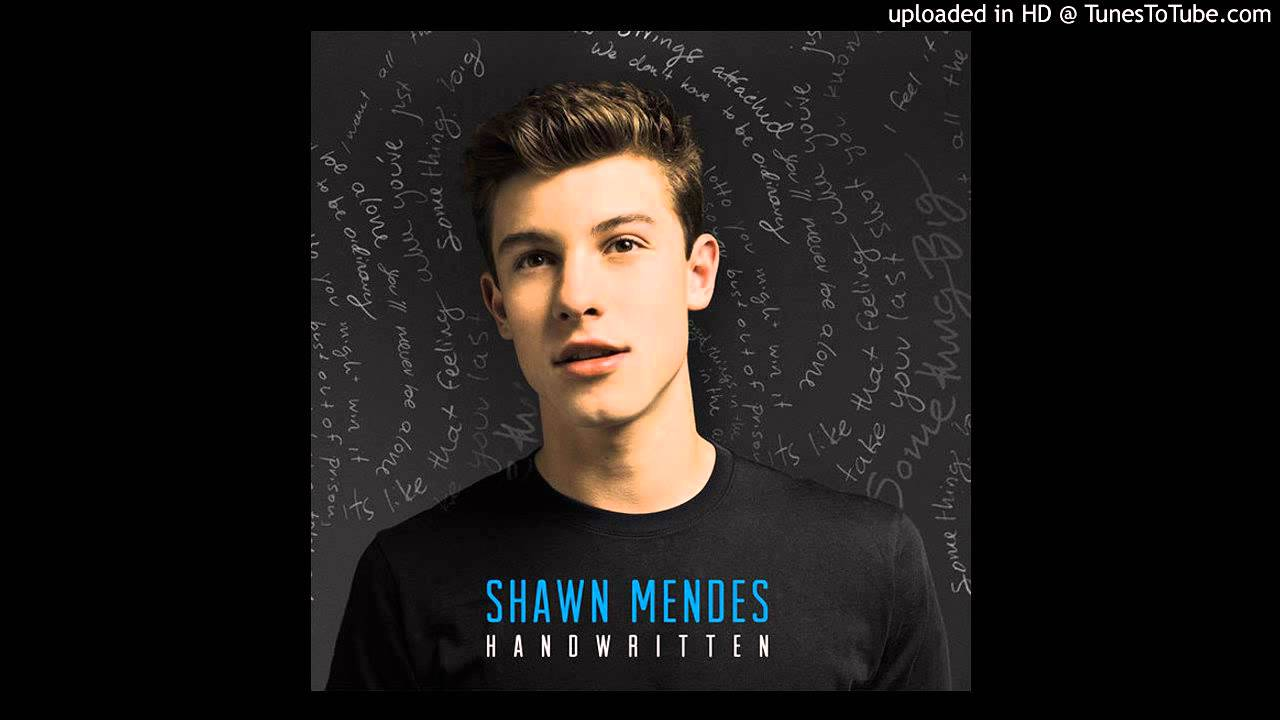 Shawn Mendes - Don't Want Your Love