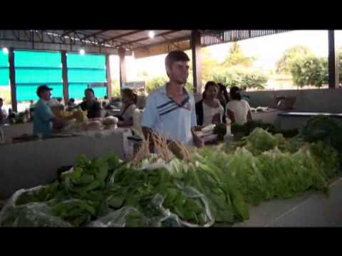 FEIRA MUNICIPAL GUARANTÃ DO NORTE Travel Video