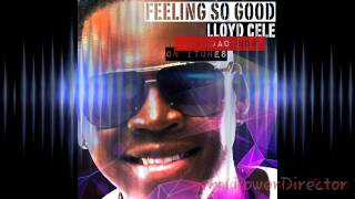 Lloyd Cele  - Feeling so good