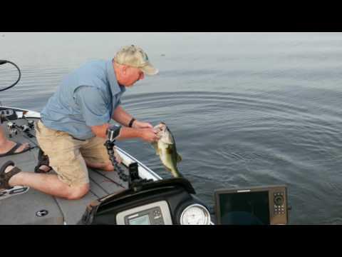 Lake Eufaula Topwater Frog Bite!
