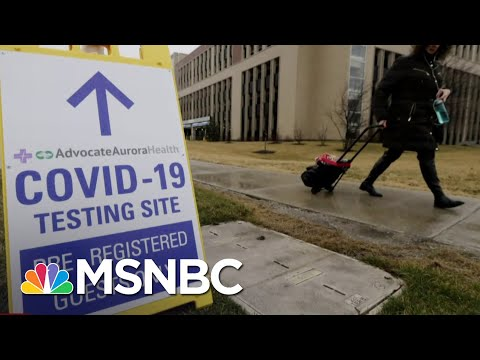 Gov. Whitmer On Coronavirus Surge: 'It's A Dire Situation' | The Last Word | MSNBC