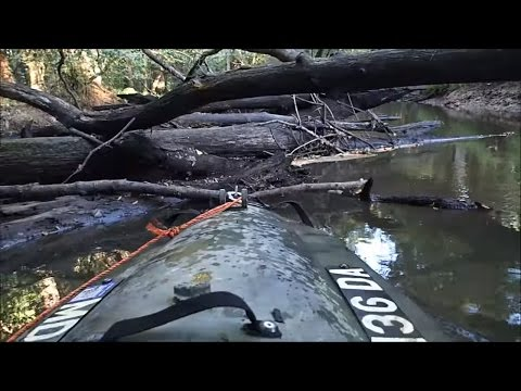 Cruising The Swamps In My Mokai
