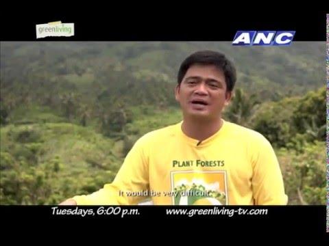 How can trees help Metro Manila? (via Green Living TV)
