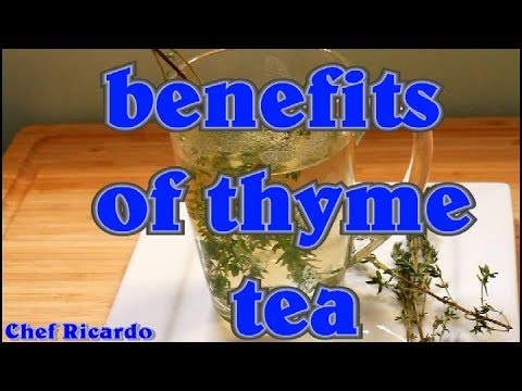 Download What Are The Health Benefits Of Thyme Tea?   Recipes By Chef Ricardo