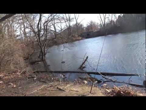 Carping On Audubon Lake -- Part 1 (Haddon Heights, NJ)