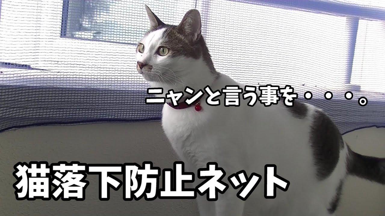 ネット 猫 ベランダ