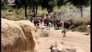 من حياة وعادات قبيلة الفولاني الامبرورو Fulani
