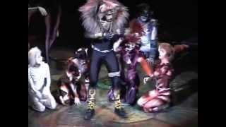 DAVID ORDINAS (Rum Tum Tugger, Cats Madrid)