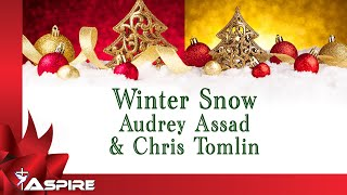 Winter Snow | Audrey Assad | Chris Tomlin | Lyrics | Lyric Video