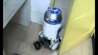 Self-made R2-D2 telepresence robot