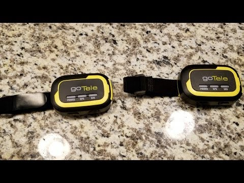 No Subscription GPS Tracker From GoTele