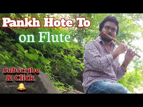 Pankh hoti to ud aati re flute tutorial lesson in hindi easy song.
