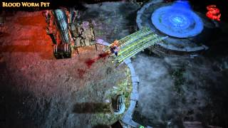 Path of Exile -  Blood Worm Pet