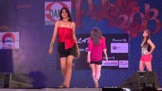 Fashion Show@AIIMS PULSE 2013_4