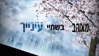 עופר לוי & עדן אבוטבול   נשיקות על השפתיים