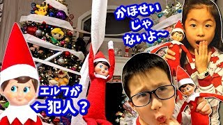 24 Hours with Elf on the Shelf Challenge