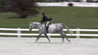Video of World Affair ridden by Winn Alden from ShowNet!
