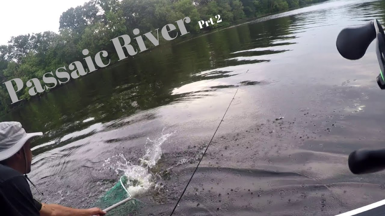 Caught my first northern pike passaic river youtube for Passaic river fishing