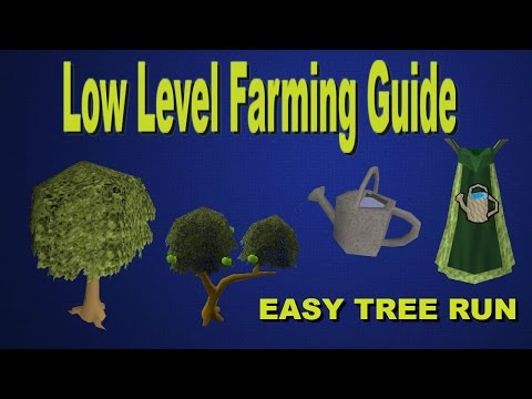 OSRS - Farming Guide - Tree Runs/Low Level Farming