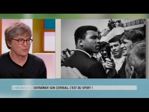 Entraîner Son Cerveau, C'est Du Sport ! - Le Magazine De La Santé