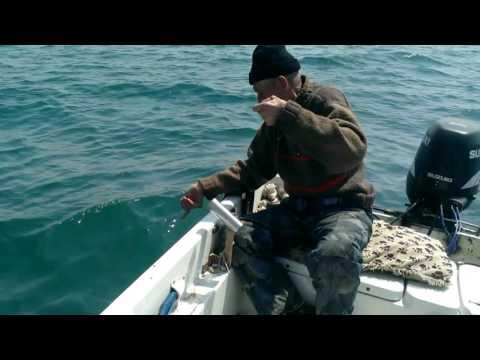 хожу врачам морская рыбалка слодке смотреть видио аппаратура систем автоматического