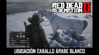 RED DEAD REDEMPTION 2 -CÓMO CONSEGUIR EL CABALLO ÁRABE BLANCO-
