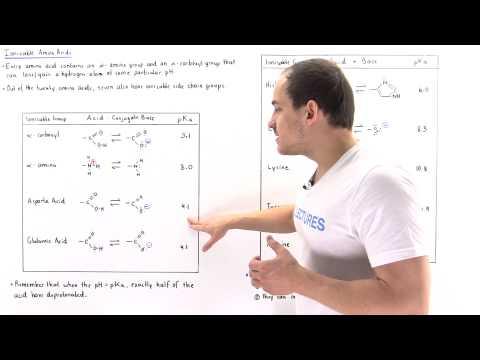 ionizable-amino-acids