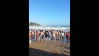 墾丁南灣大浪捲走了多名泳客,多人目睹經過