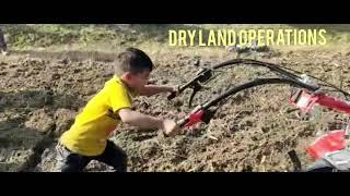 VST PUBERT MAESTRO 55 P ALL APPLICATIONS VIDEO