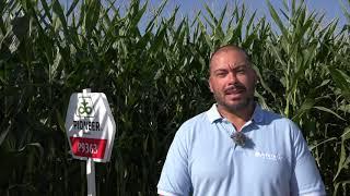 Успешно земеделие - броят от 08.09.2020