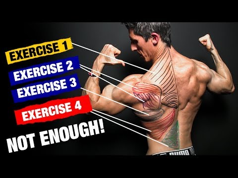 The PERFECT Back Workout (Sets and Reps Included)