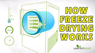 How Freeze Drying Works