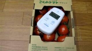 簡易的な野菜の放射能汚染チェック手順 thumbnail
