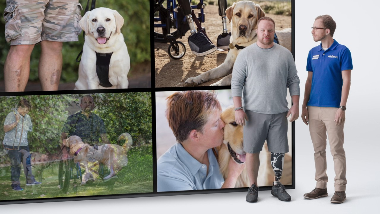 Service Dogs For Heroes Rating