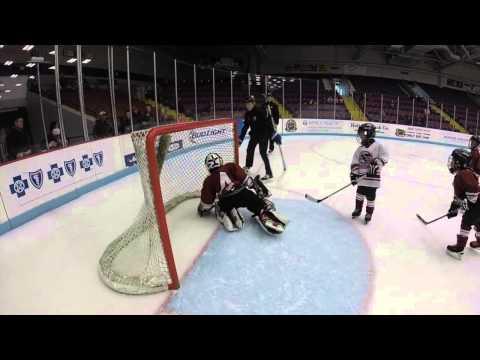 Muskegon Chiefs Mites Hockey February 7, 2015
