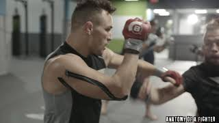 Michael Chandler talks about his decision to re-sign with Bellator   Anatomy of a Fighter
