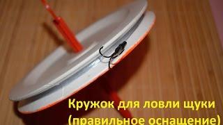 Кружок для ловли щуки (правильное оснащение)