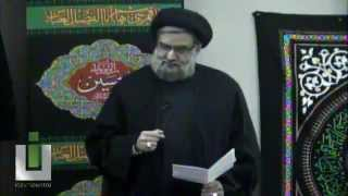 Sanctity of Human Life; Status of Imam Hussain on this Earth - Maulana Syed Muhammad Rizvi