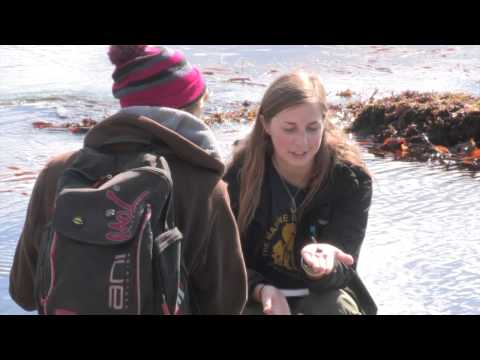 Wildlife Conservation Training: field teaching, species identification, career advice
