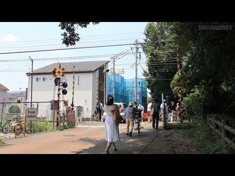 2017.7.8 西武国分寺線「恋6踏切」 Seibu Kokubunji Line  Koigakubo No.6 railroad crossing