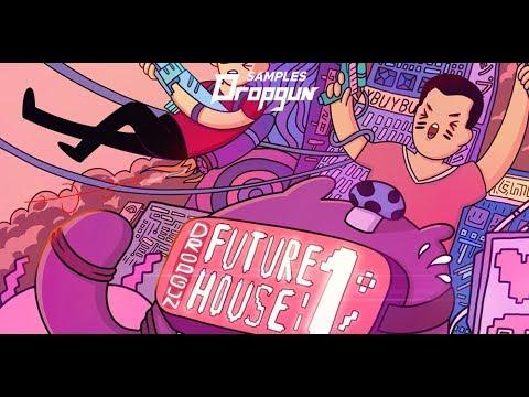 Dropgun Samples-  Dropgun Future House 1 (Sample Pack)