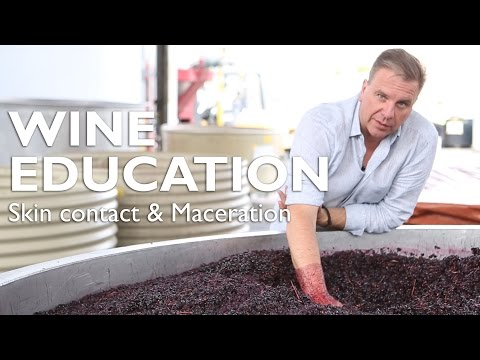 wine article WINE EDUCATION  Skin contact  Maceration